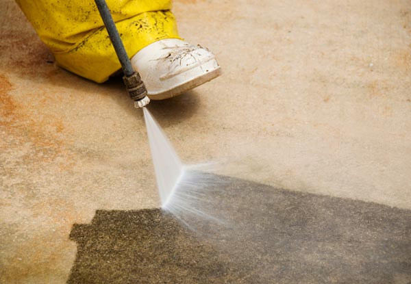 Moss & Mold Removal incl. Water Blasting Pathway, Steps, Deck or Patio up to 50m² - Option to incl. Moss & Mold Treatment