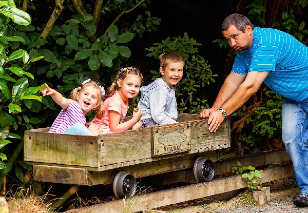 One-Year Unlimited Adult Pass to Staglands Wildlife Reserve - Option for a Child Pass