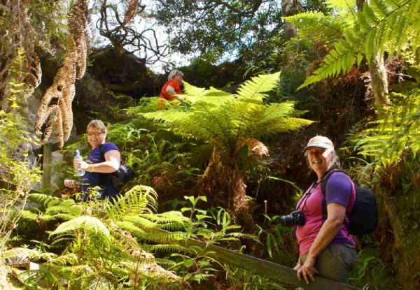 "Orakei Korako ""The Hidden Valley"" Day Trip Departing from Rotorua - Option for Adult or Child"